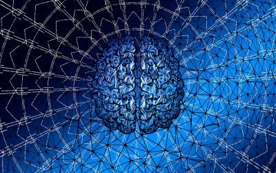How are your brain, mind and thoughts programmed?