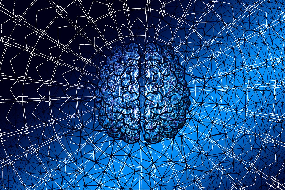 What programs your brain, mind and thoughts?