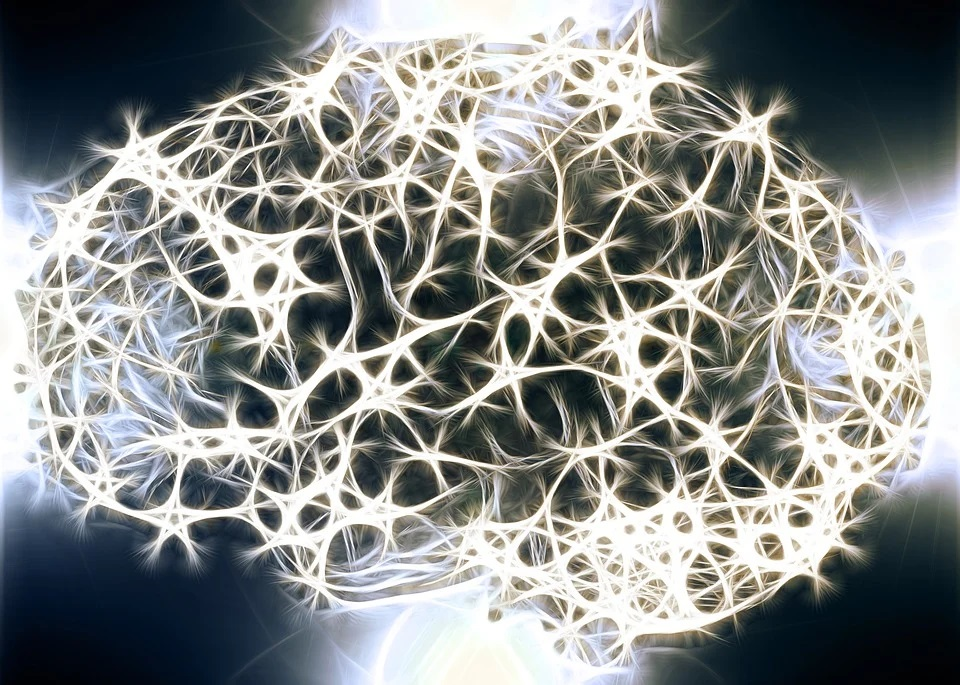 The patterns of the brain can make it easy to lose yourself in a web of belief structures.